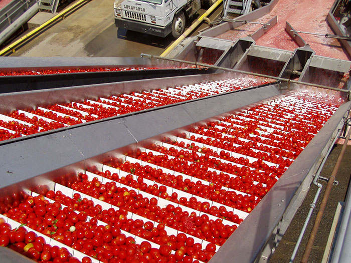 Food Ingredients Condiments Sauces Manufacturer Mail: Westcon Foods: Specialists In Industrial Tomato Products